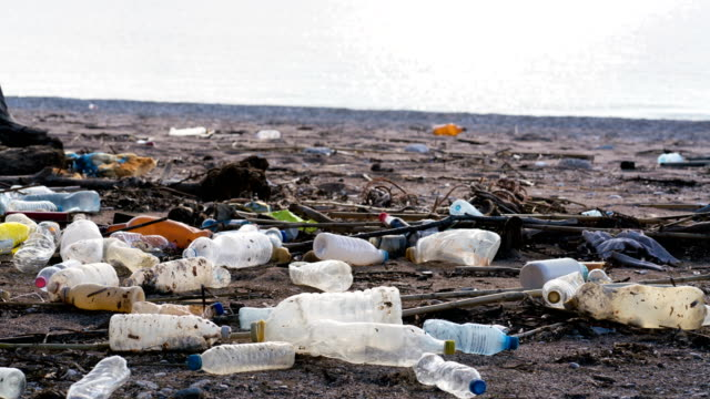 vídeos de stock e filmes b-roll de beach polluted with plastic bottles - poluição