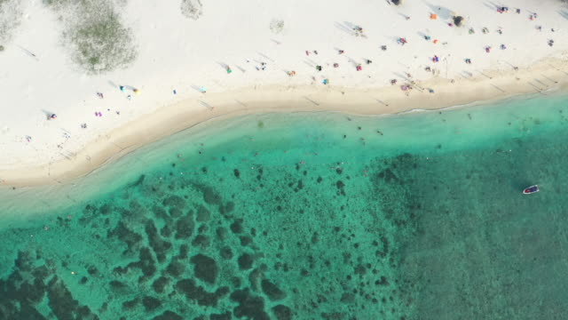 beach seen from above with people respecting social distancing rules - isole mauritius video stock e b–roll