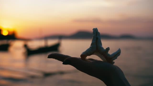 vídeos de stock e filmes b-roll de beach shells held by woman hand in a tropical paradise - bugio