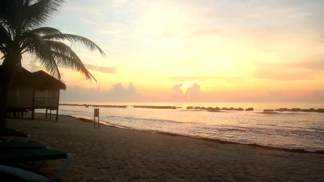 Beach sunrise with Palm tree, sea and sand video