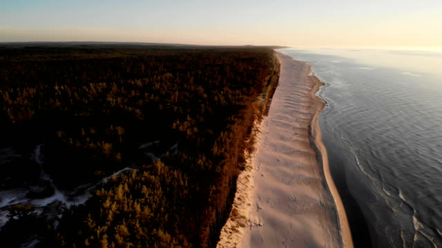 beach sunset. aerial view of polish coastline - польша стоковые видео и кадры b-roll