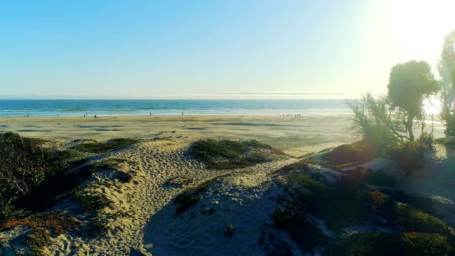 beach - idylliczny filmów i materiałów b-roll