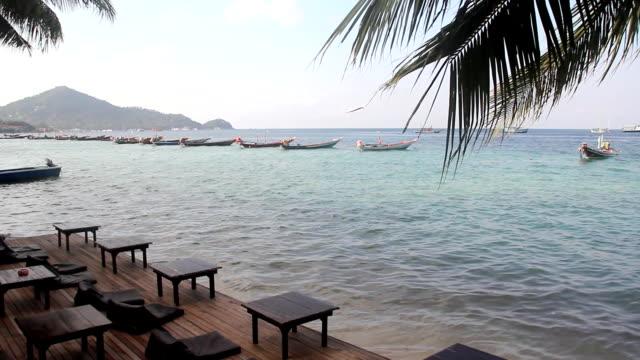Beach ((HD) video