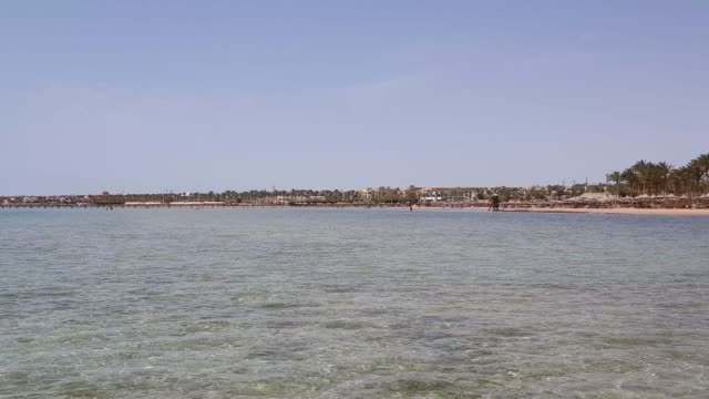 Beach with Umbrellas and Sunbeds in Egypt. Resort on Red Sea Coast. video