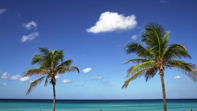 vídeos de stock e filmes b-roll de beachfront in playa boracoa - oscilar