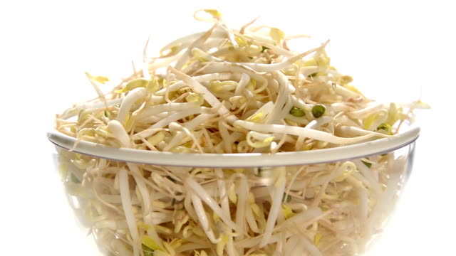 stockvideo's en b-roll-footage met bean sprouts - spruitjes