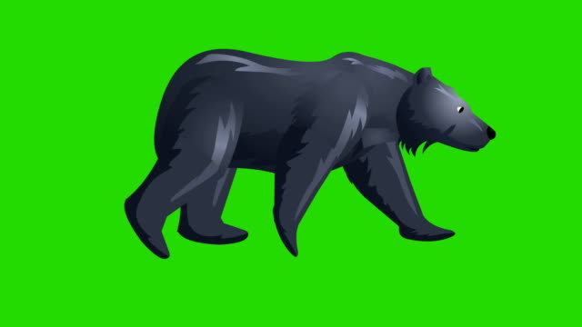Bear walk cycle animation