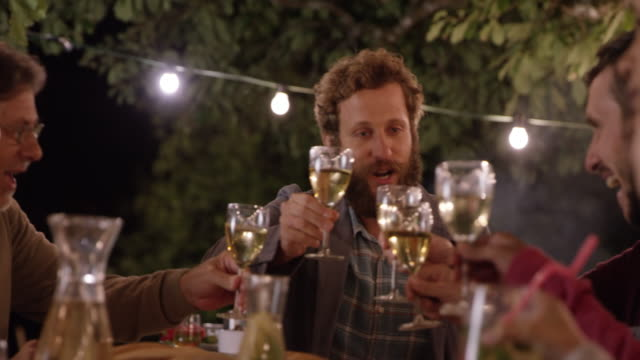 Bearded man proposing a toast at a picnic in the evening