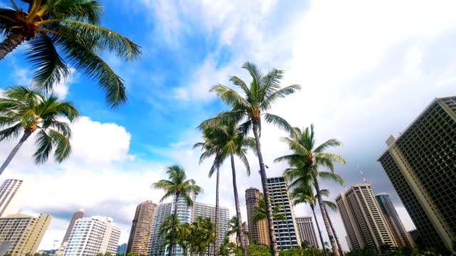 Beatiful view at tropical Waikiki Beach resort in 4k slow motion 60fps