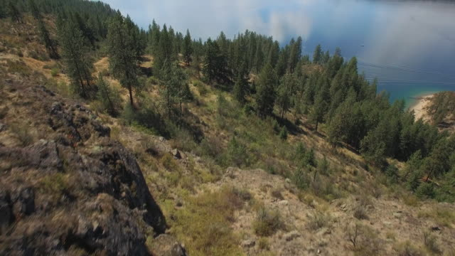 Beautiful Aerial Over Dry Eastern Washington Forest to Reveal Lake Roosevelt on Sunny Day video
