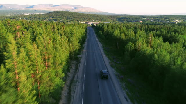 beautiful aerial view of asphalt road in the forest - aerial road stock videos & royalty-free footage