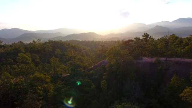 Beautiful aerial view of forest in mountains on sunset