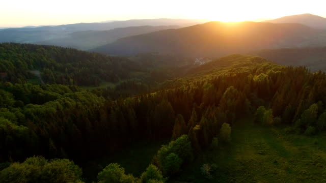 Beautiful aerial view of forest in mountains on sunset video