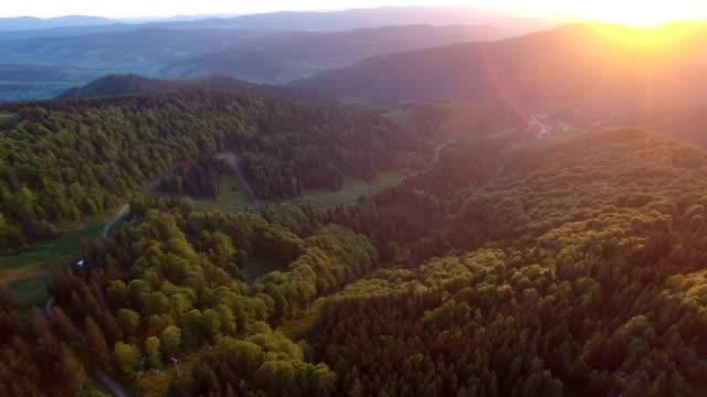 bellissima vista aerea della foresta in montagna al tramonto - monti appalachi video stock e b–roll