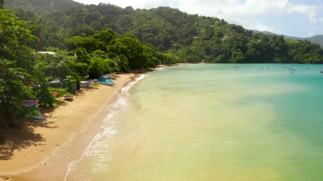 Beautiful aerial view of the Tobago island in the Caribbean sea. Beautiful aerial view of the Tobago island in the Caribbean sea. Palm Beach In Tropical Idyllic Paradise Island - Caribbean sri lanka stock videos & royalty-free footage