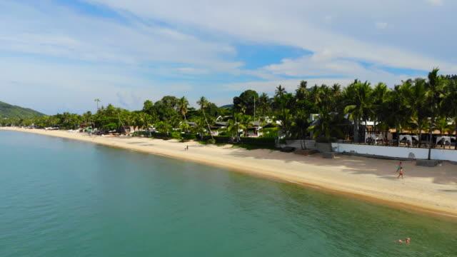 ビーチとサムイ島のココナッツ椰子の木の周りの海と美しい空撮 - サムイ島点の映像素材/bロール