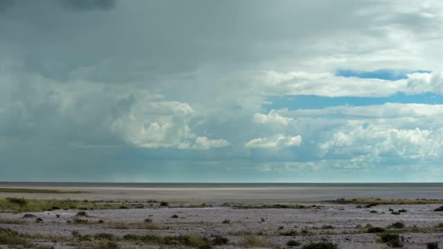 schöne afrikanische savanne vor regen - afrikanische steppe dürre stock-videos und b-roll-filmmaterial