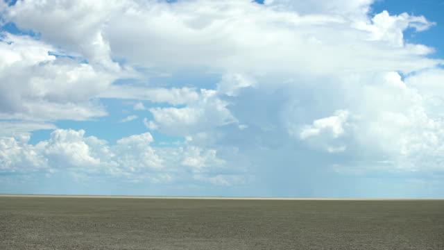 schöne afrikanische savanne - afrikanische steppe dürre stock-videos und b-roll-filmmaterial