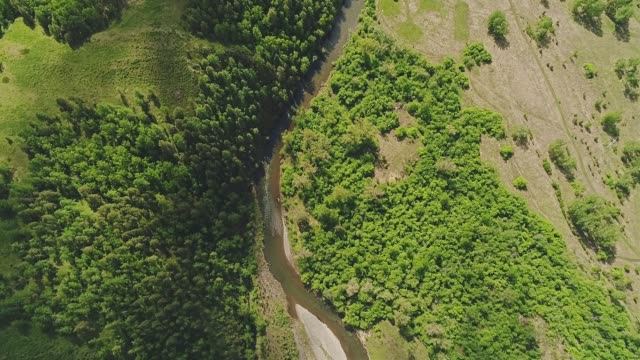 beautiful air view of the mountain river on a background of green landscape. - quadcopter filmów i materiałów b-roll