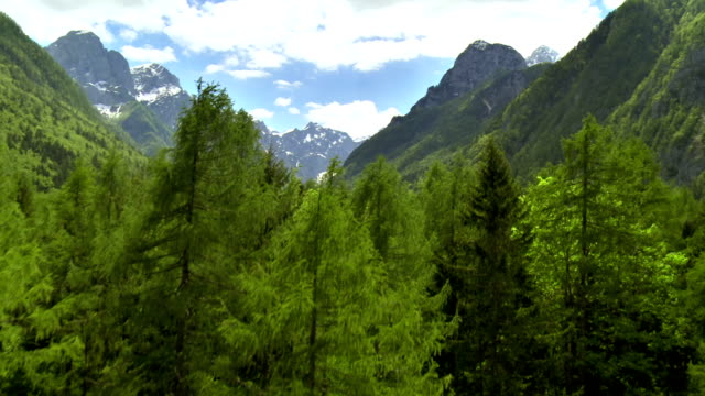 WS AERIAL Beautiful Alpine Landscape video