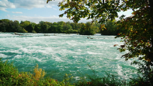 Beautiful and berene river Niagara on a sunny day. Not far from Niagara Falls video