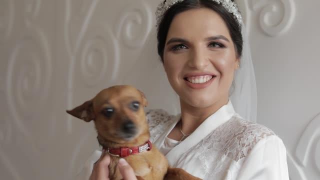 vídeos de stock, filmes e b-roll de noiva bonita e encantadora no vestido e no véu da noite com cão engraçado. casamento - moda de casamento