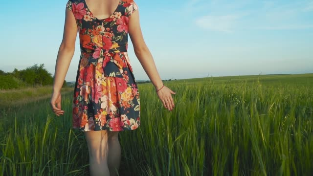 beautiful, attractive European girl with long leggs in short skirt with flowers walks in a rye field and strokes the rye spikes by hand