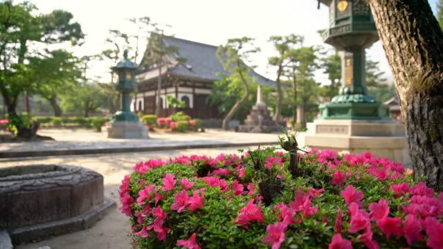 ds schönen hinterhof des tempels - kloster stock-videos und b-roll-filmmaterial