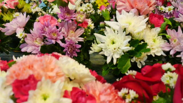 Beautiful blooming flowers in flower market video