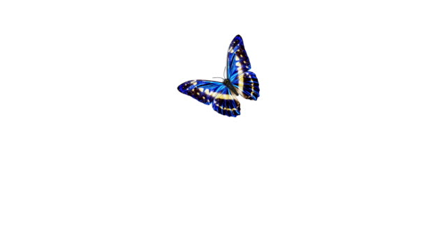 Beautiful Blue Colored Butterfly Flying and Sitting on White and Green Backgrounds Close-up. Loop-able 3d Animation with Green Screen Alpha Mask.