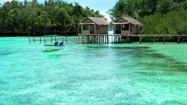 Beautiful Blue Lagoone with some Bamboo Huts, Kordiris Homestay, Palmtree in Front, Gam Island, West Papuan, Raja Ampat, Indonesia video