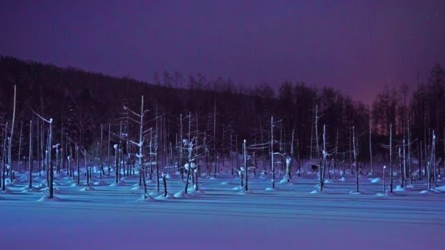 vacker blå damm i biei hokkaido japan - hokkaido bildbanksvideor och videomaterial från bakom kulisserna