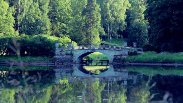 Beautiful bridge reflected in the forest lake video
