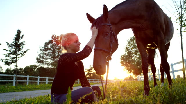 slow motion: beautiful cheerful girl sitting on grass, scratching, petting horse - equino video stock e b–roll