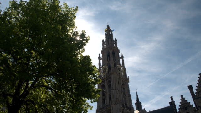 close up: beautiful church tower of cathedral of our lady behind tree canopy - gothic architecture stock videos & royalty-free footage