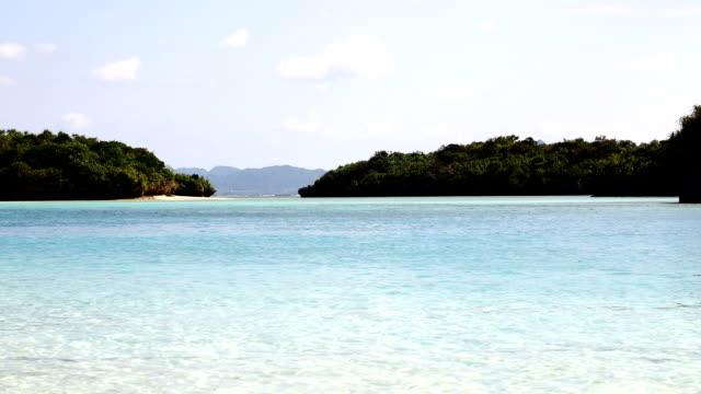 美しく透明な水の湾で kabira 石垣島ます。 - 石垣点の映像素材/bロール