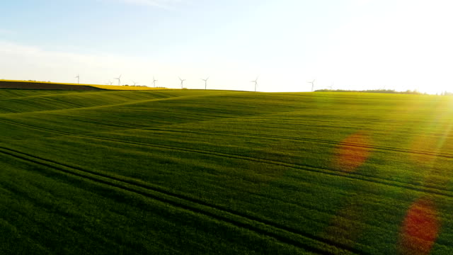 Schöne Landschaft, Äckern und Windräder im Hintergrund. – Video
