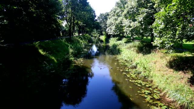 Beautiful creek in Nordrhein Westfalen (Germany) video
