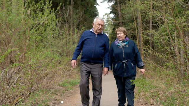 A beautiful elderly couple, walking in the park, talking kindly. Good mood, positive life. Love each other, hold hands. A beautiful elderly couple, walking in the park, talking kindly. Good mood, positive life. Love each other, hold hands. In evening time. charming stock videos & royalty-free footage