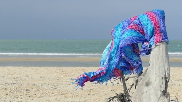 beautiful fabric on dry log on beach video