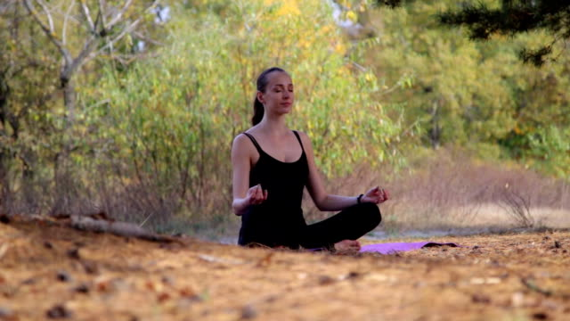 beautiful female making yoga in forest - gambe incrociate video stock e b–roll