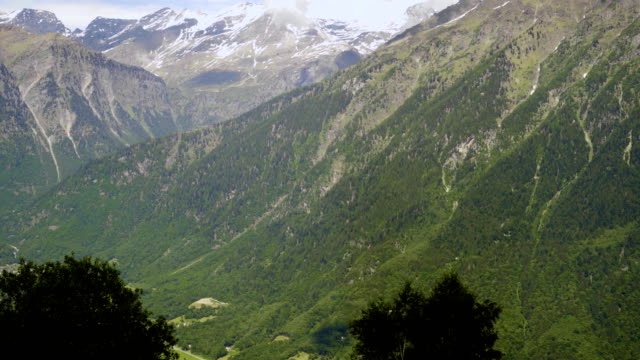 Beautiful fields and forests in the Alpine mountains. video