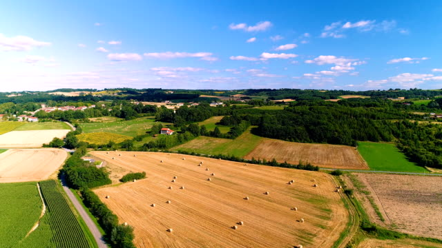 beautiful fields in aerial view under the blue sly. we can see agricultural fields all over the horizon in a rural area - drone view - центральная европа стоковые видео и кадры b-roll