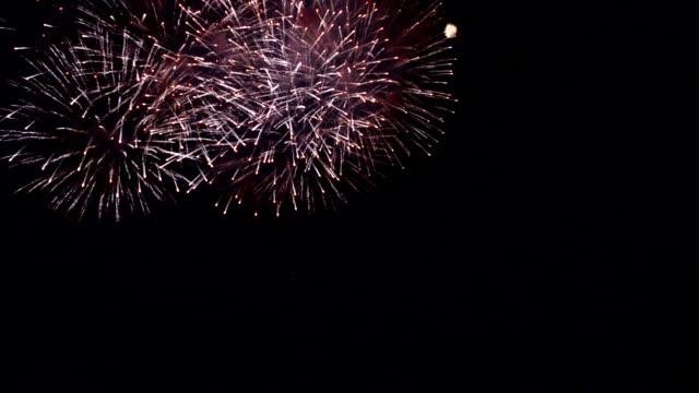 Beautiful Firework Blooming video