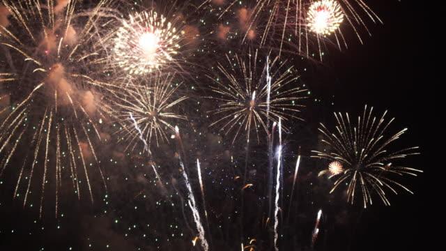 beautiful firework display celebration on black and dark sky background - luglio video stock e b–roll