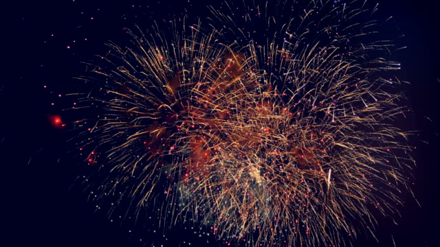 Beautiful fireworks displayed in a dark sky. 4K. Beautiful fireworks displayed in a dark sky. happy 4th of july videos stock videos & royalty-free footage
