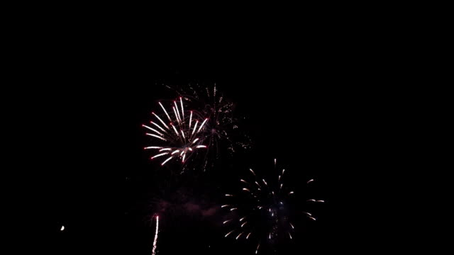Beautiful Fireworks Beautiful Fireworks bastille day stock videos & royalty-free footage