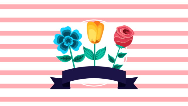 beautiful flowers garden with ribbon animated