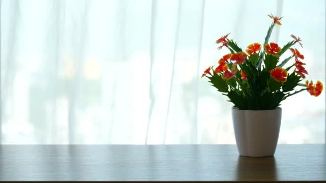 vídeos de stock e filmes b-roll de beautiful flowers in front of room windows - living room background
