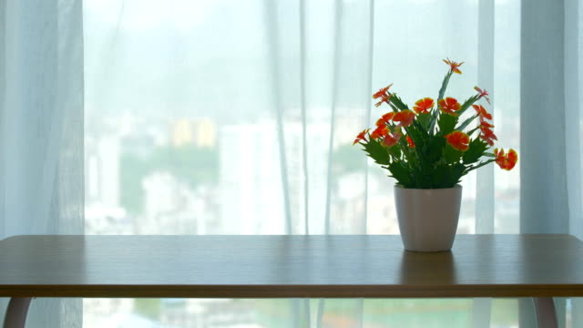 Beautiful flowers in front of room windows